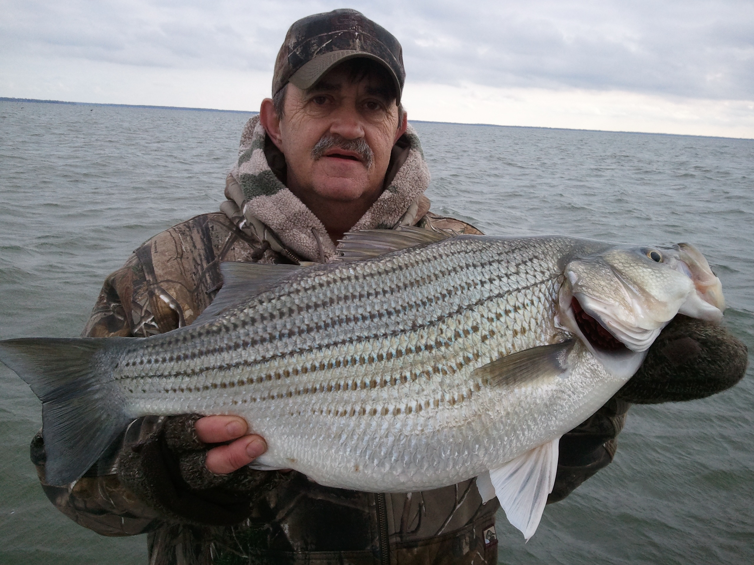 Hybrid Striper,Lake Tawakoni Fishing Guide,Matt Cartwright