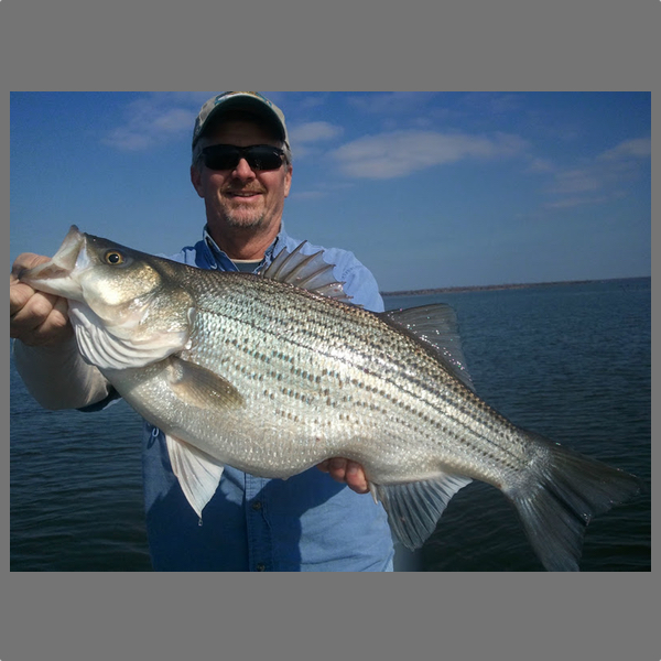 Lake tawakoni fishing guide matt cartwright pictures for Lake tawakoni fishing guides